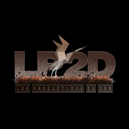 LOGO-LP2D-CINESTIC
