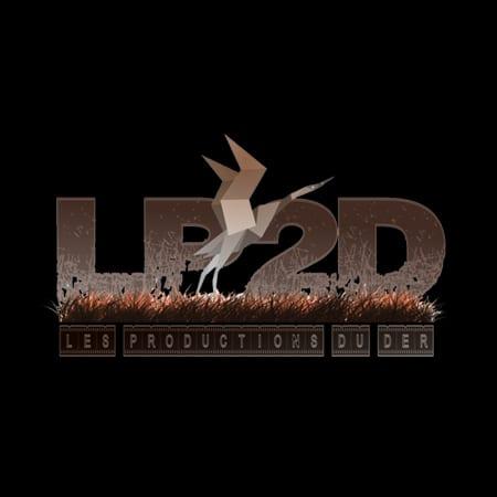 LOGO-LP2D-CINESTIC